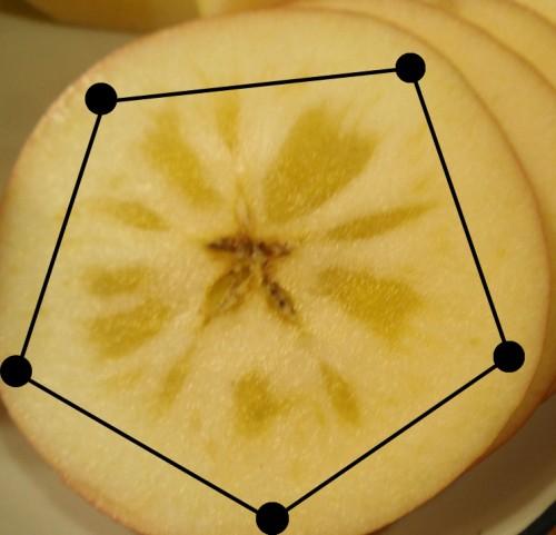 リンゴ 5角形