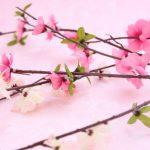「立春」にはどんな意味がある?立春の日にやる事。日程など